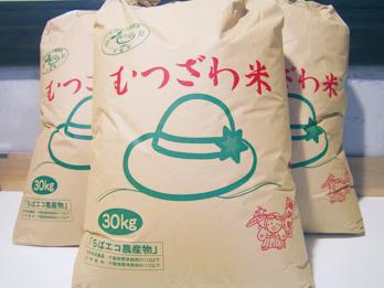 むつざわ米コシヒカリ 15kg