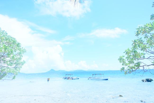 直径34m、周囲110m!世界最小の島「きせきのしま」の絶景