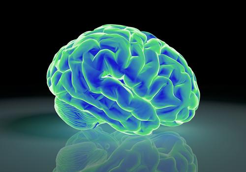 前向き脳の作り方「海馬を鍛えればストレスにも勝てる」