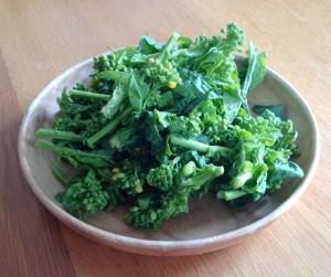 苦みは良いもの?春野菜でたまったものを排出しよう!
