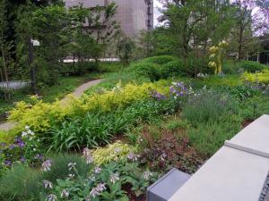 宿泊者以外でも楽しめる緑豊かな空間が都会に出現