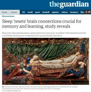 睡眠の目的は疲労回復のためではなかった!?眠りのイメージがガラリと変る話題3選