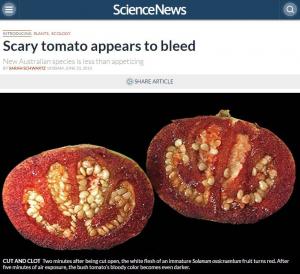 火星でも育つ!?栄養豊富なトマトが持つ11の効能で夏を乗り切れ!
