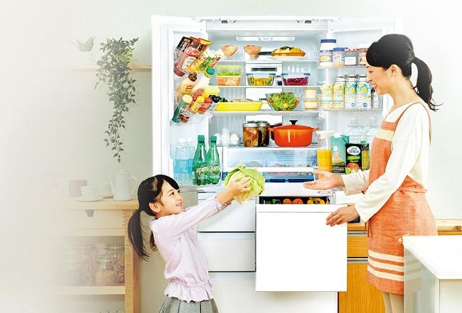 冷蔵庫 500l サイズ